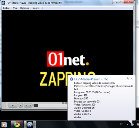 Capture d'�cran FLV Media Player