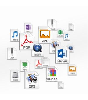 Récupération de données : quelques exemples de formats qui peuvent être récupérés